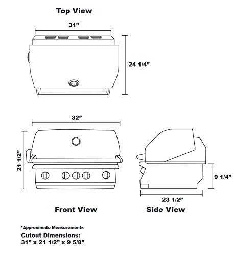 41RCjyhzqL Lion Gas Grills -- Time for a Cooking Upgrade?