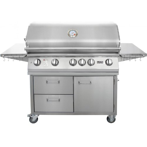 41eBTnTca3L Lion Gas Grills -- Time for a Cooking Upgrade?