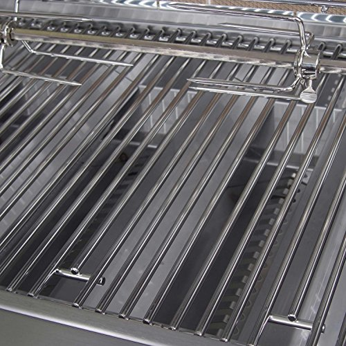 61139hC1Q6L Lion Gas Grills -- Time for a Cooking Upgrade?